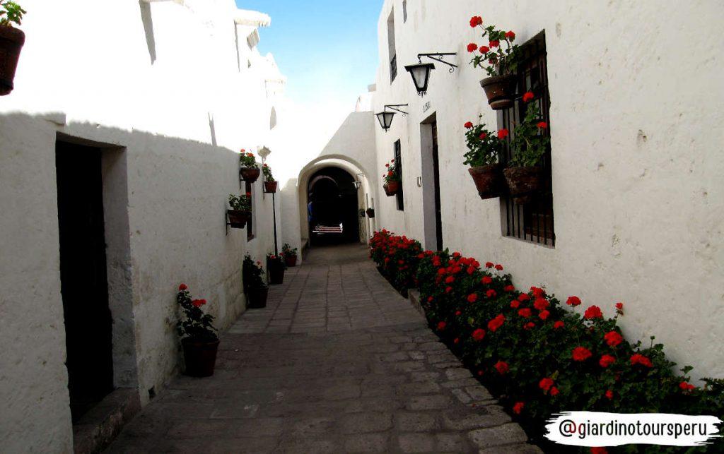 Santa catalina Monastery Arequipa