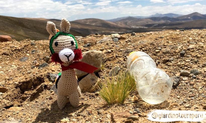 Protecting the planet_Cuidando el planeta